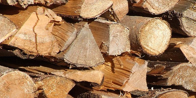Grillen-mit-Holz