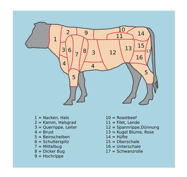 Rind-Bezeichnung-der-Teile-Fleisch