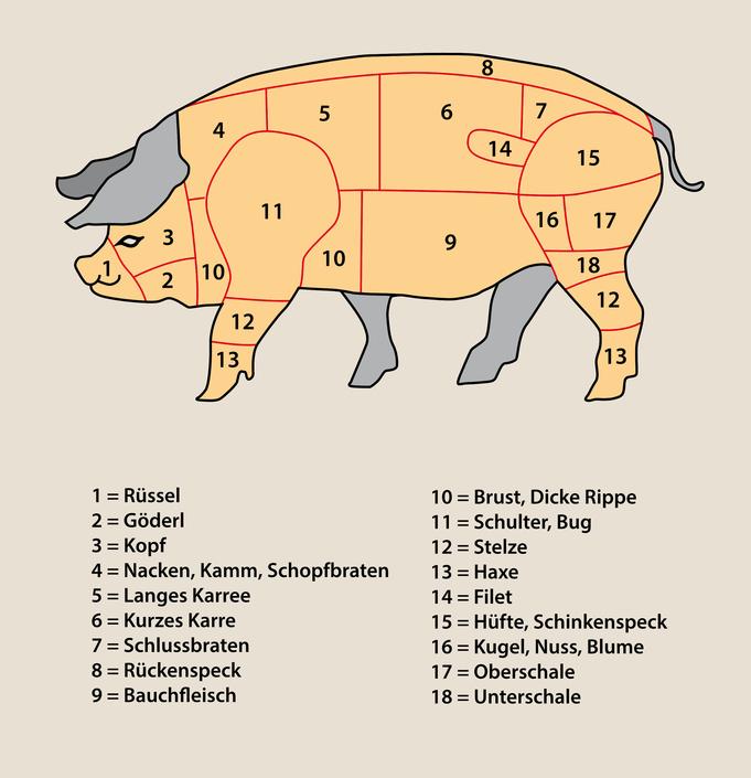 Schwein-Bezeichnung-der-Teile-Fleisch